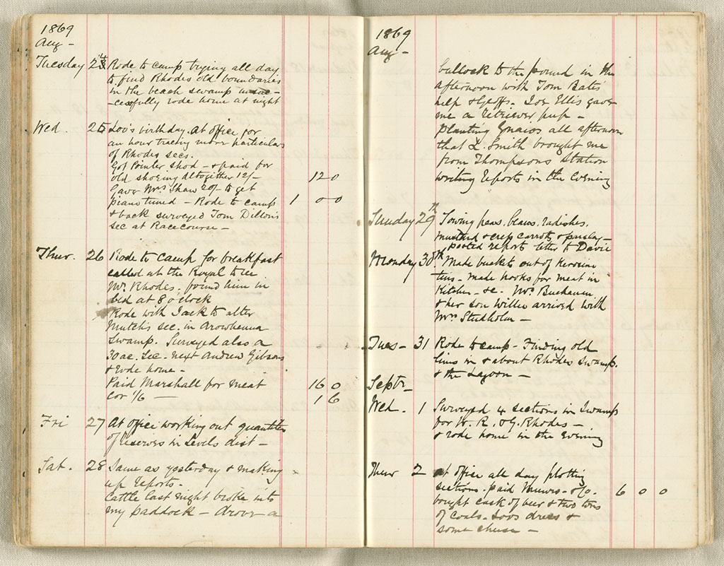 Diary, December 10th 1866 to August 5th 1872 - Digital Collection