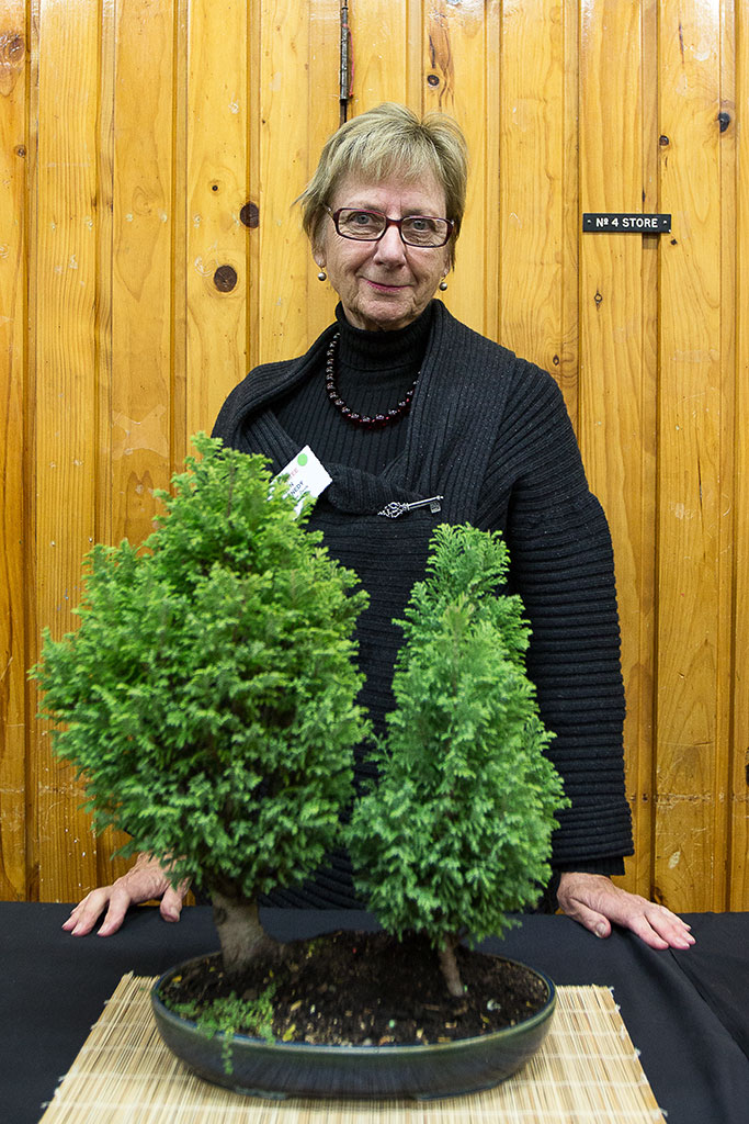Thumbnail Image of Lyn Kennedy, a member of the Avon Bonsai Society